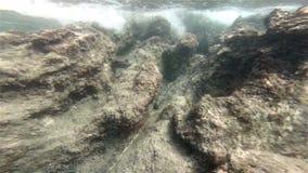 unterwasser stock footage
