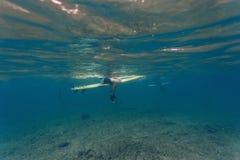 Unterwasseransicht eines Surfers Lizenzfreies Stockfoto