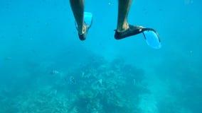 unterwasseratemgerät Lizenzfreies Stockfoto
