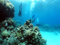 Unterwasseratemgerät Lizenzfreies Stockbild