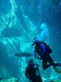 Unterwasseratemgerät Taucher Lizenzfreie Stockfotos