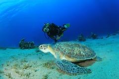 Unterwasseratemgerät-Taucher und grüne Schildkröte lizenzfreies stockfoto