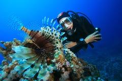Unterwasseratemgerät-Taucher und Lionfish Stockfotos