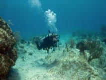 Unterwasseratemgerät-Taucherschwimmen über einem Kaiman-Insel-Riff Lizenzfreies Stockbild