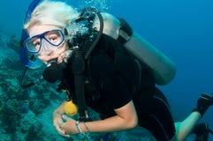 Unterwasseratemgerättaucher auf einem Sturzflug Lizenzfreies Stockbild