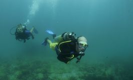 Unterwasseratemgerättaucher Swim auf einem Sturzflug Lizenzfreie Stockbilder