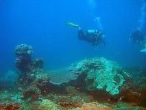 Unterwasseratemgerättaucher und Korallenriff Lizenzfreie Stockbilder
