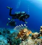 Unterwasseratemgerättaucher und Lionfish Stockbilder