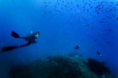 Unterwasseratemgerättaucher Unterwasser Stockfotos
