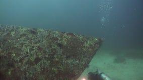 Unterwasseratemgerättaucher Unterwasser Philippinen, Mindoro stock footage