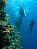 Unterwasseratemgerättauchergruppe Lizenzfreie Stockfotos