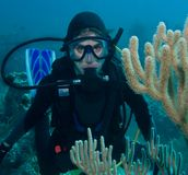 Unterwasseratemgerättaucher Lizenzfreies Stockfoto