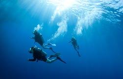 Unterwasseratemgerättaucher accend von einem Sturzflug Lizenzfreies Stockfoto