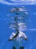 Unterwasserfotographie eines Geschäftsmannes Lizenzfreies Stockbild
