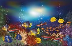 Unterwasserhintergrund tropicals Fische stock abbildung