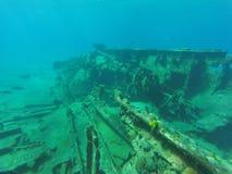 Unterwasserlandschaft in Kuba Stockfoto