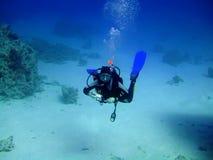 Unterwasserphotograph Lizenzfreie Stockfotos