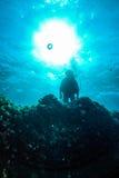 Unterwasserschattenbild-Taucher und Riff Stockfotos