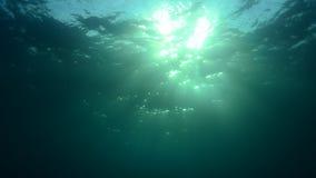 Unterwassersonnendurchbruch stock video
