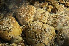 Unterwassersteine im Garten Stockfotografie
