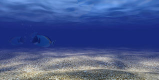 Unterwasserszene 3d mit 3 Fischen Lizenzfreies Stockbild