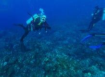 Unterwasserszene mit Sporttaucher im karibischen Meer stockbilder