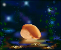 Unterwasserwelt, Seashell und Anlagen Lizenzfreie Stockfotos