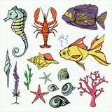 Unterwasserweltgroße Satz-Hand gezeichnete Vektor-Illustration Stockfotos