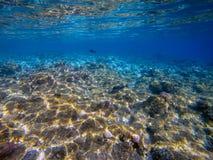 Unterwasserweltlandschaft, buntes Korallenriff und blaues klares wa stockfoto