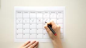 Unterzeichnen Sie den Tag im Kalender mit einem Stift, zeichnen Sie eine Zecke stock video