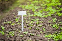 Unterzeichnen Sie herein Garten Lizenzfreie Stockbilder