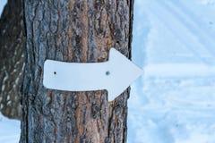 Unterzeichnen Sie mit einem weißen Pfeil auf einem Baum Lizenzfreie Stockbilder