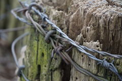 Untidy Barbed Wire On Fence Post Closeup 2 Stock Images