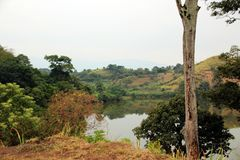 Untouched endless landscape in Africa Uganda. With Fazinierender flora and fauna Royalty Free Stock Image