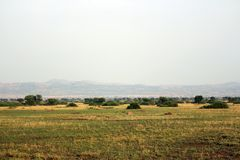Untouched endless landscape in Africa Uganda. With Fazinierender flora and fauna Royalty Free Stock Photography