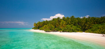 Untouched island. In the indian ocean Stock Photography