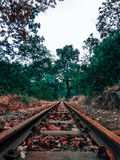 The untouched journey Royalty Free Stock Photo