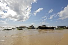 Untouched nature in Portugal. Untouched nature at the atlantic ocean in Portugal royalty free stock photos