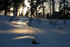 Untouched pristine snow with last rays of a sunset lighting a path. Sun forming a golden bridge on untouched snow banks. Alone in the forest, peaceful and caml stock photo