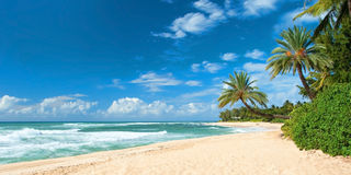 Untouched sandy beach with palms trees and azure ocean. In background panorama royalty free stock photography