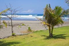 Untouched sandy beach Stock Photos