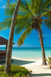 Untouched tropical beach Royalty Free Stock Photography