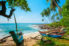Untouched tropical beach. With palms and fishing boats in Sri-Lanka Stock Photo