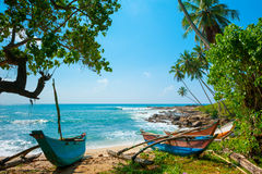 Untouched tropical beach. With palms and fishing boats in Sri-Lanka stock image