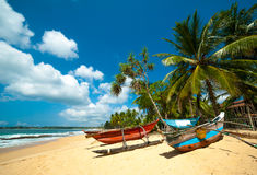 Untouched tropical beach Royalty Free Stock Photos