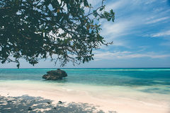 Untouched tropical beach coastline, turquoise view of the sea wi Stock Photos