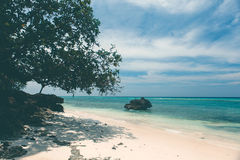 Untouched tropical beach coastline, turquoise view of the sea wi Stock Photography