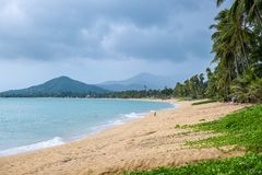Untouched tropical beach in Koh Samui island, Thailand. Untouched tropical beach in Koh Samui island stock photos