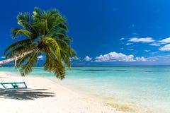 Untouched tropical beach, Maldives beach stock photo