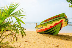 Untouched tropical beach with palms, Asia Royalty Free Stock Photos